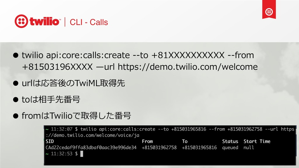 CLI - Calls • twilio api:core:calls:create --to...