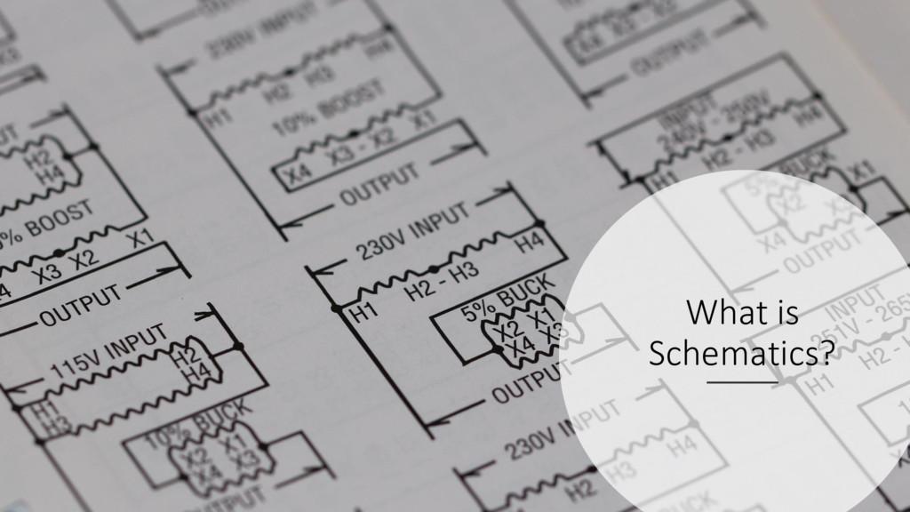 ManfredSteyer What is Schematics?