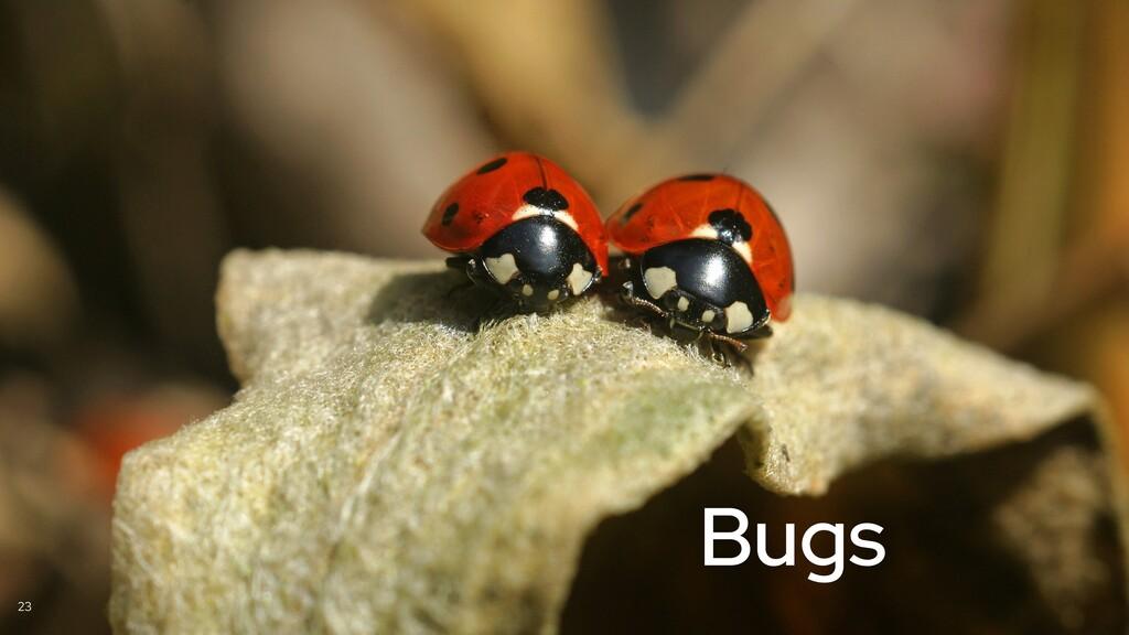 @yanaga 23 Bugs