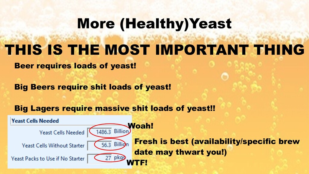 More (Healthy)Yeast THIS IS THE MOST IMPORTANT ...