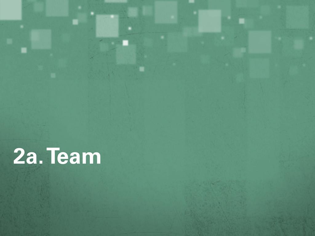 2a. Team