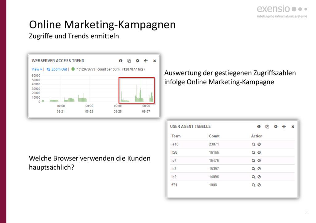 21 Online Marketing-Kampagnen Zugriffe und Tren...