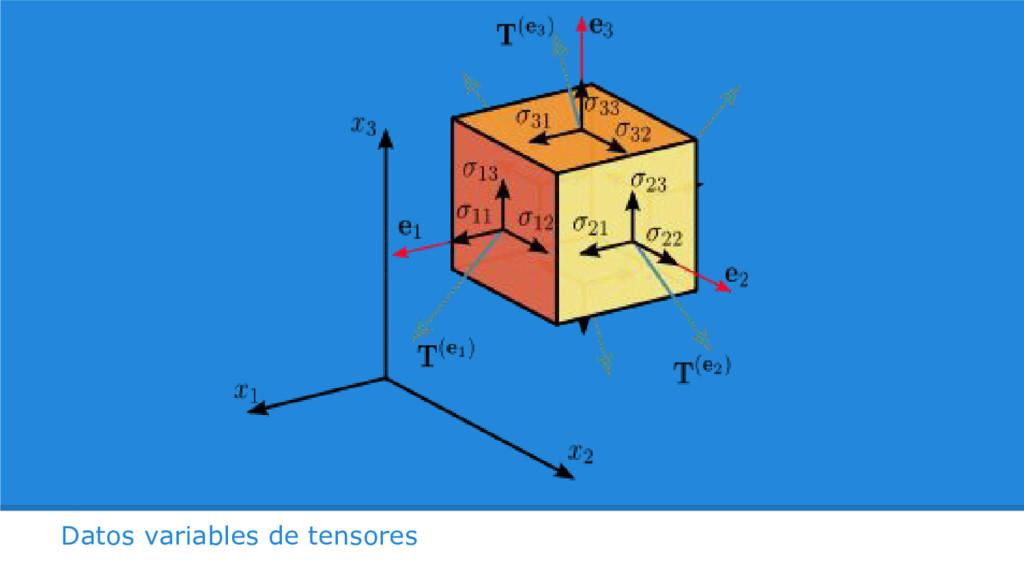 Datos variables de tensores