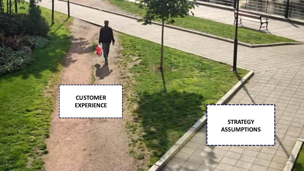 CUSTOMER EXPERIENCE STRATEGY ASSUMPTIONS
