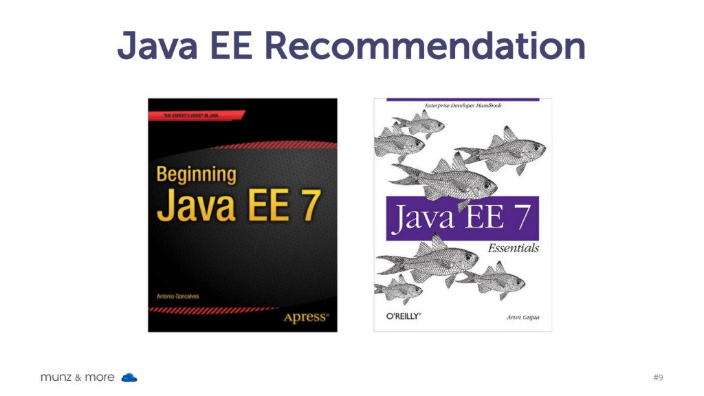 Java EE Recommendation munz & more #9
