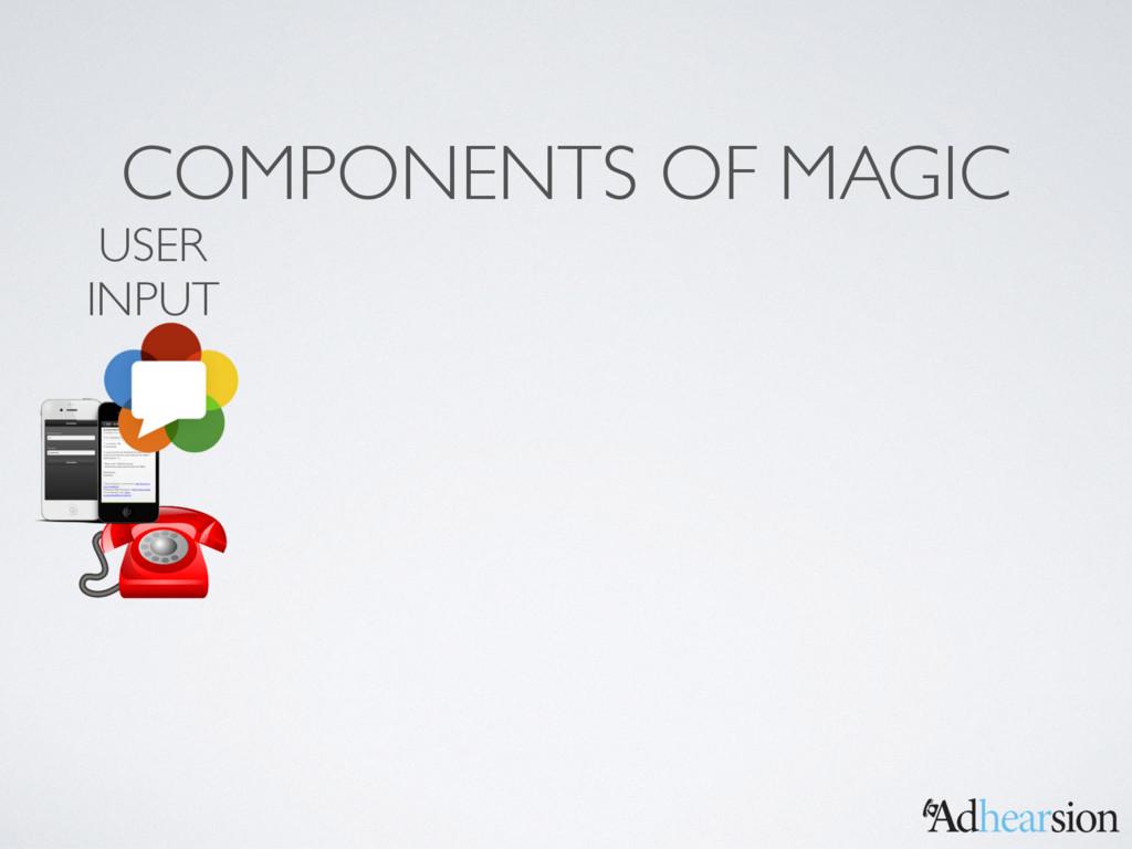 COMPONENTS OF MAGIC USER INPUT