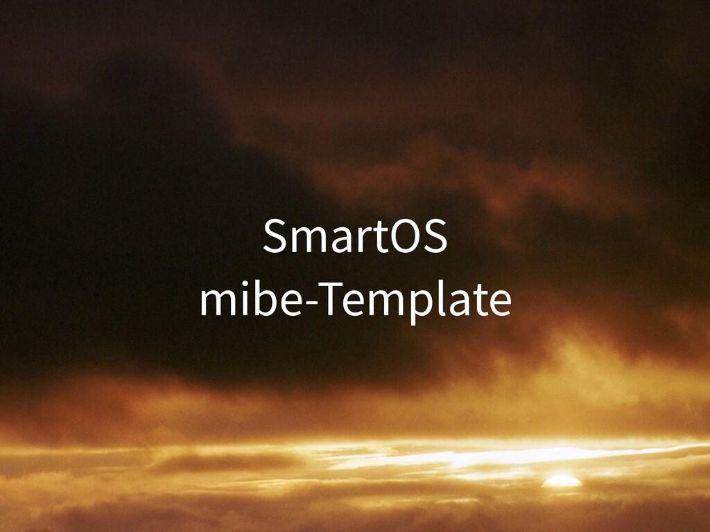 SmartOS mibe-Template