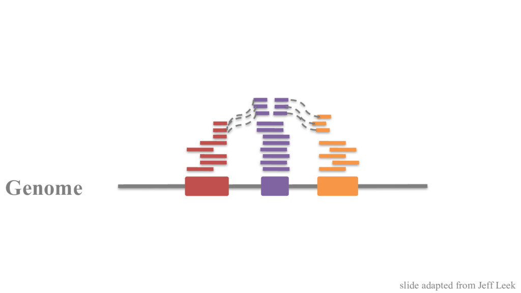Genome slide adapted from Jeff Leek