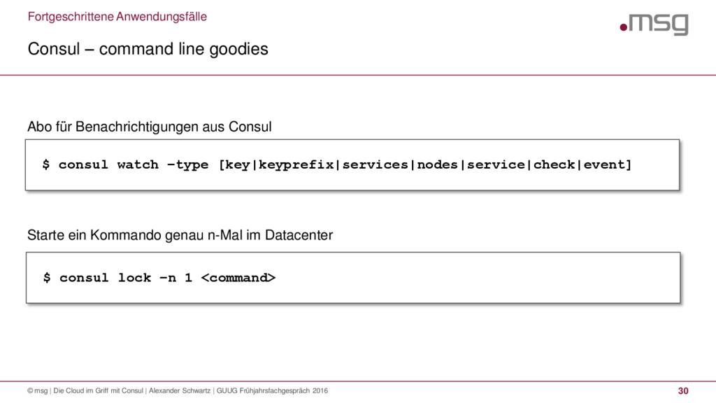Fortgeschrittene Anwendungsfälle Consul – comma...