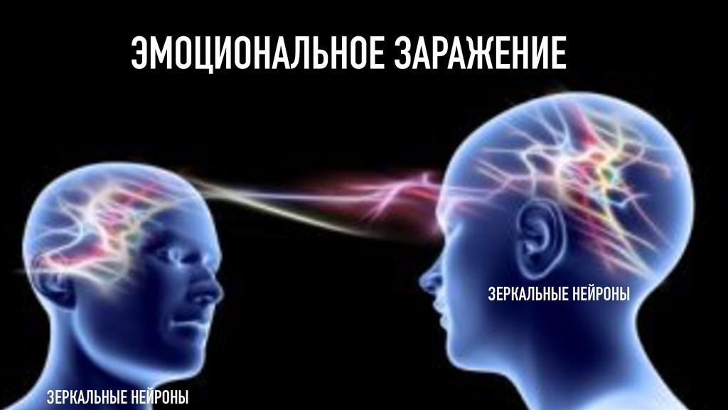 ЭМОЦИОНАЛЬНОЕ ЗАРАЖЕНИЕ ЗЕРКАЛЬНЫЕ НЕЙРОНЫ ЗЕРК...