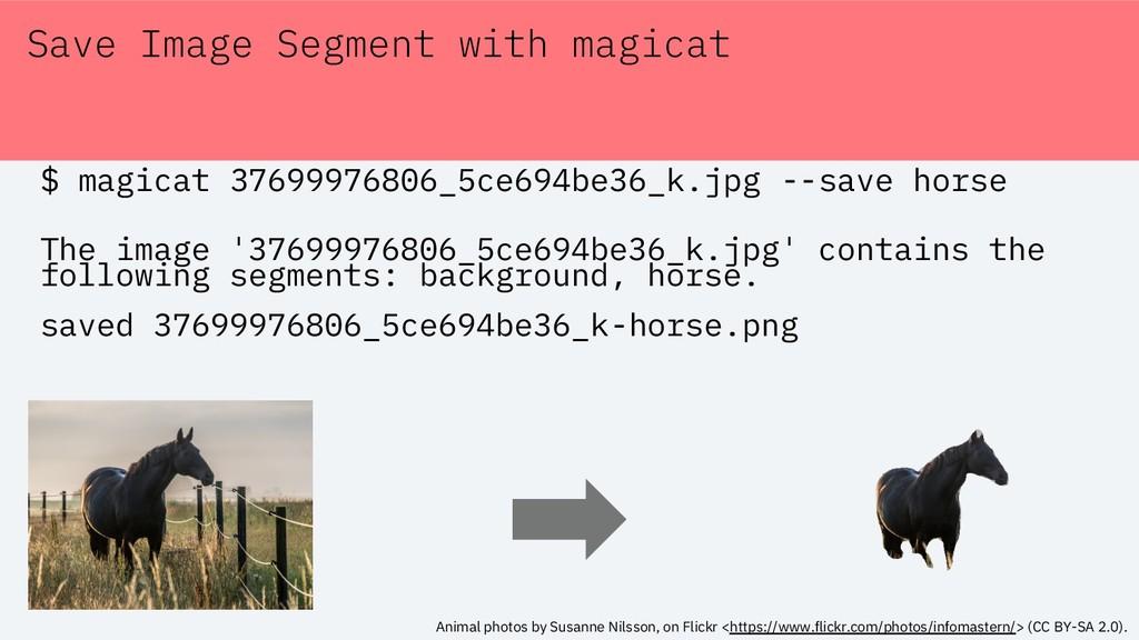 Save Image Segment with magicat $ magicat 37699...