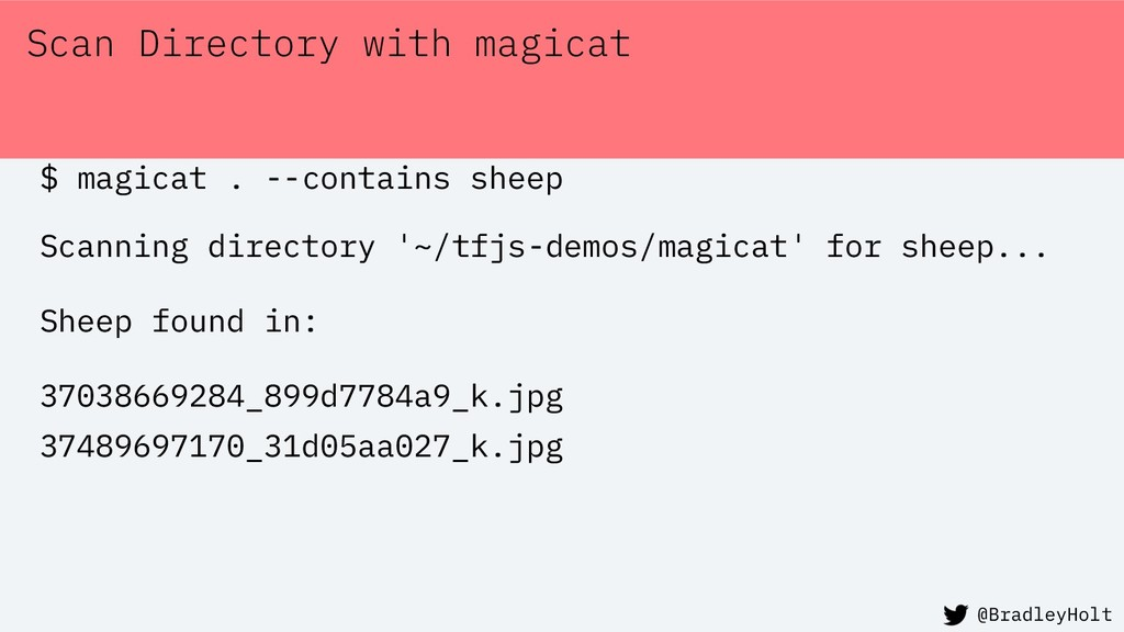 Scan Directory with magicat $ magicat . --conta...
