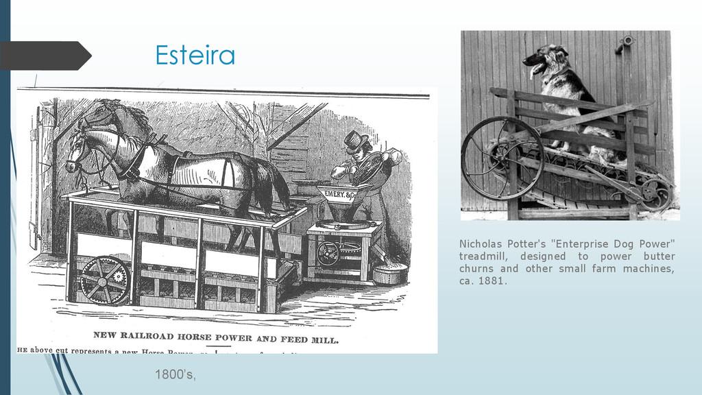 """Esteira Nicholas Potter's """"Enterprise Dog Power..."""