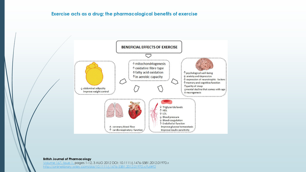 Exercise acts as a drug; the pharmacological be...
