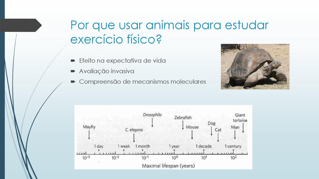 Por que usar animais para estudar exercício fís...