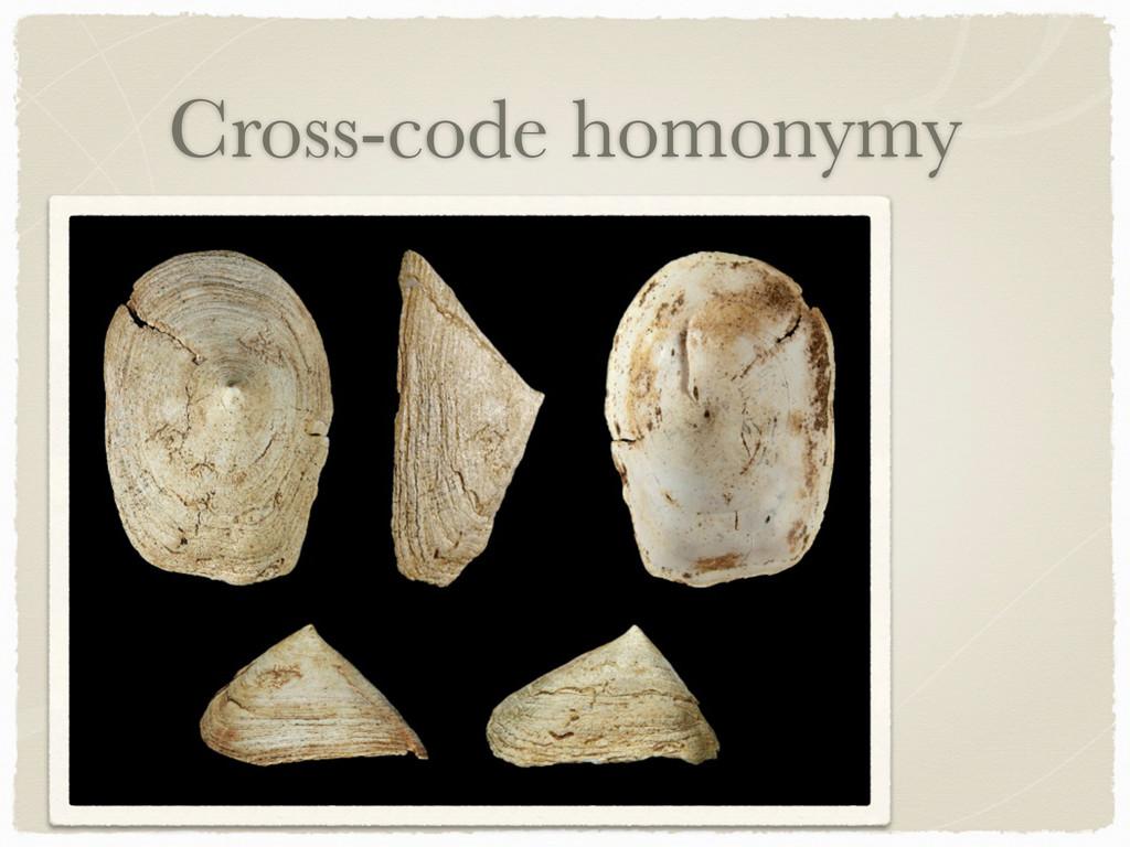 Cross-code homonymy