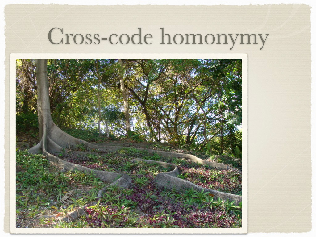 Cross-code homonymy