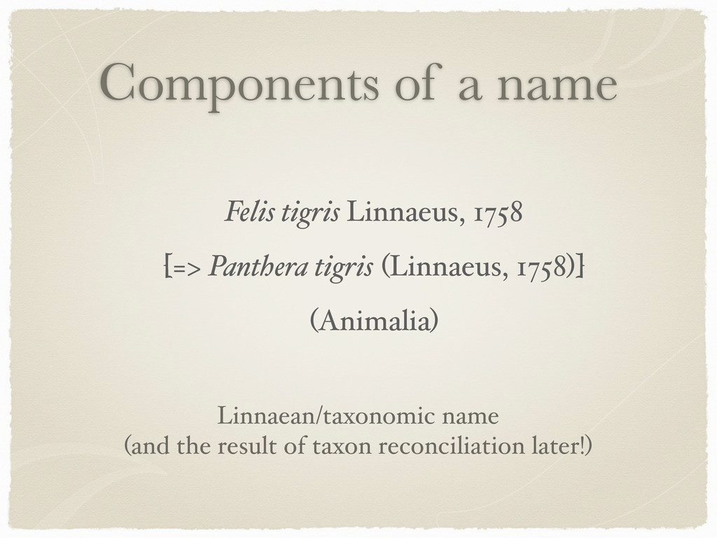 Components of a name Felis tigris Linnaeus, 175...
