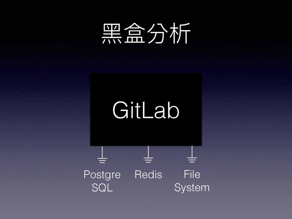 ⿊黑盒分析 GitLab Redis Postgre SQL File System