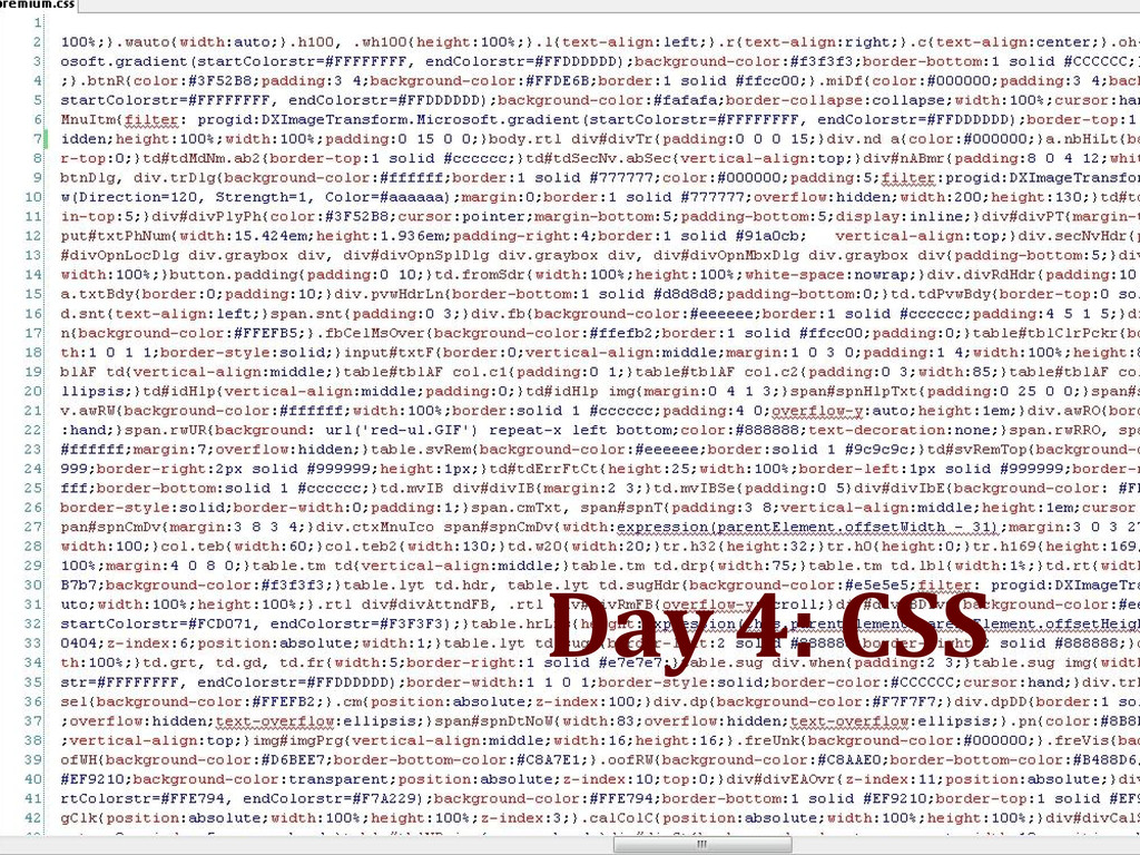 Day 4: CSS