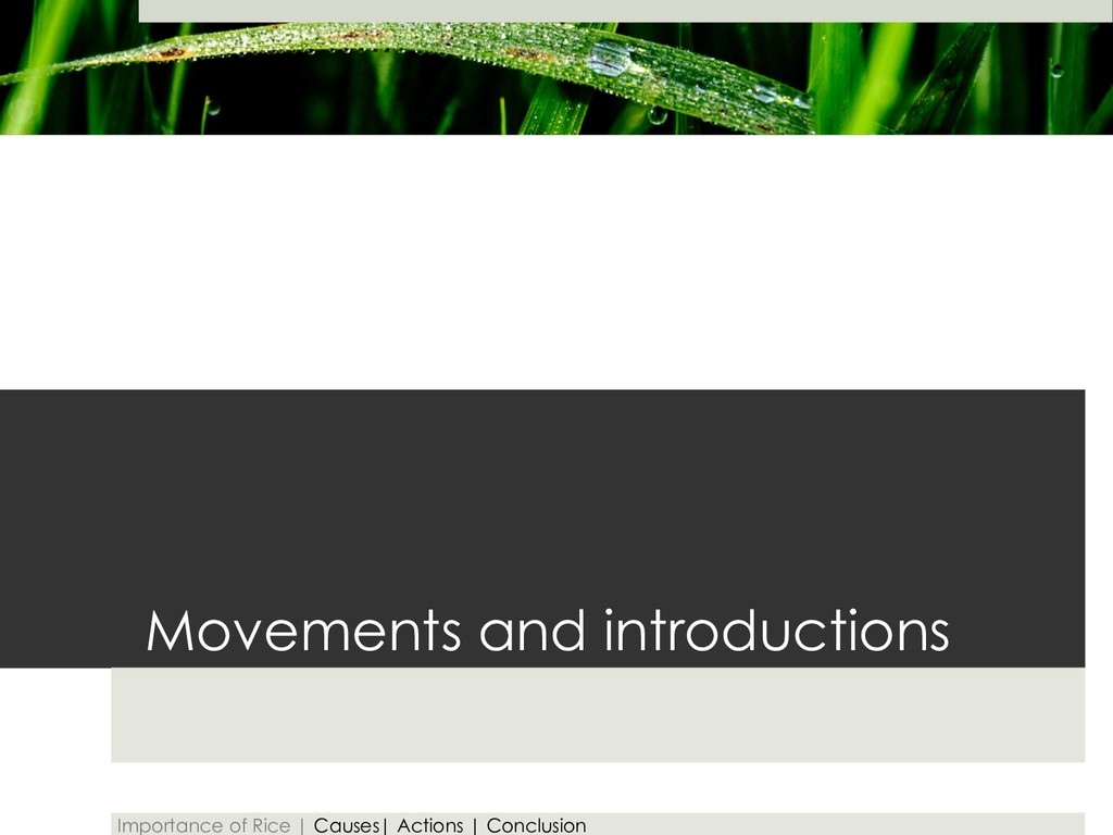 Movements and introductions Importance of Rice ...