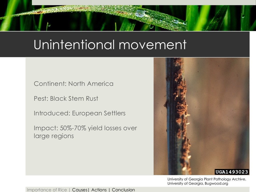 Unintentional movement Continent: North America...