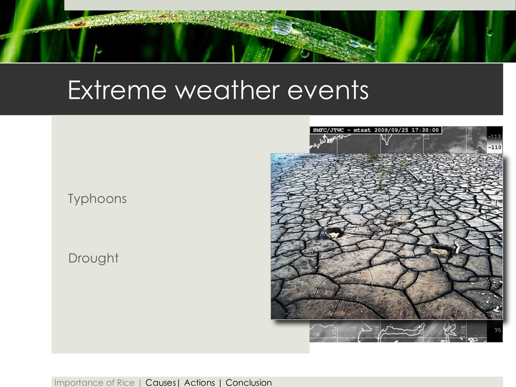 Extreme weather events Typhoons Drought Importa...