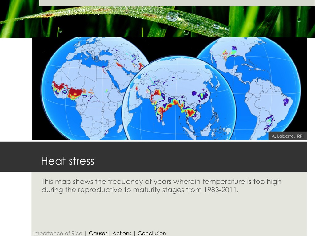 Heat stress This map shows the frequency of yea...