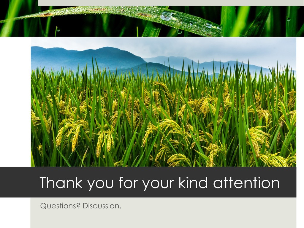 Thank you for your kind attention Questions? Di...