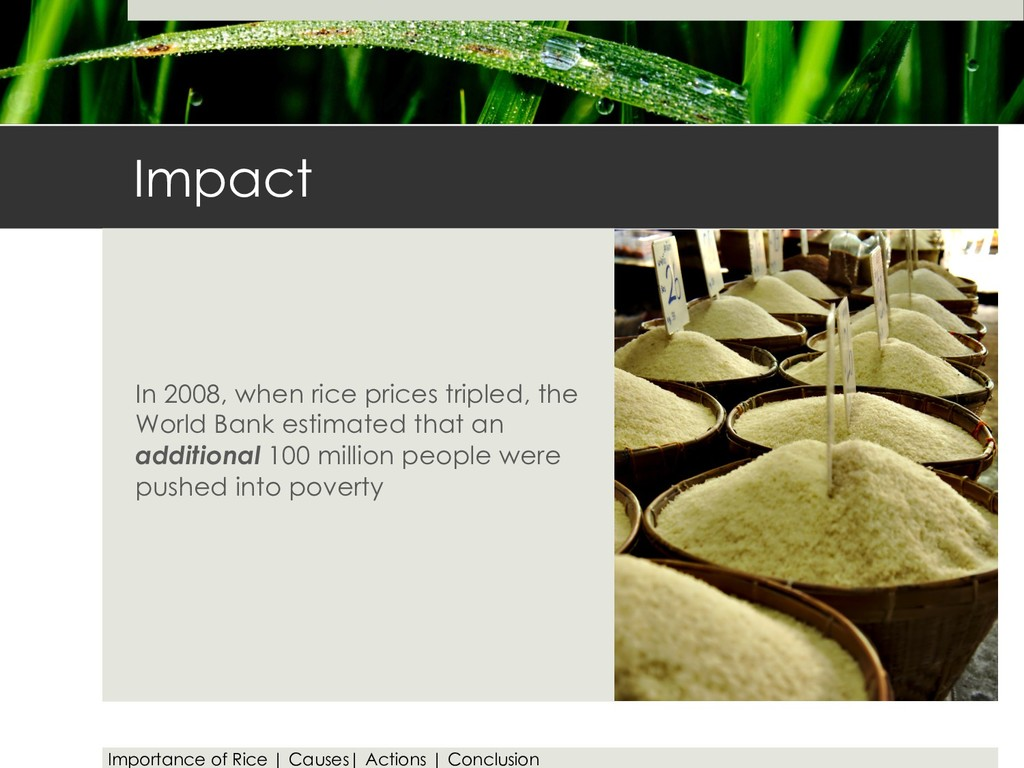 Impact In 2008, when rice prices tripled, the W...