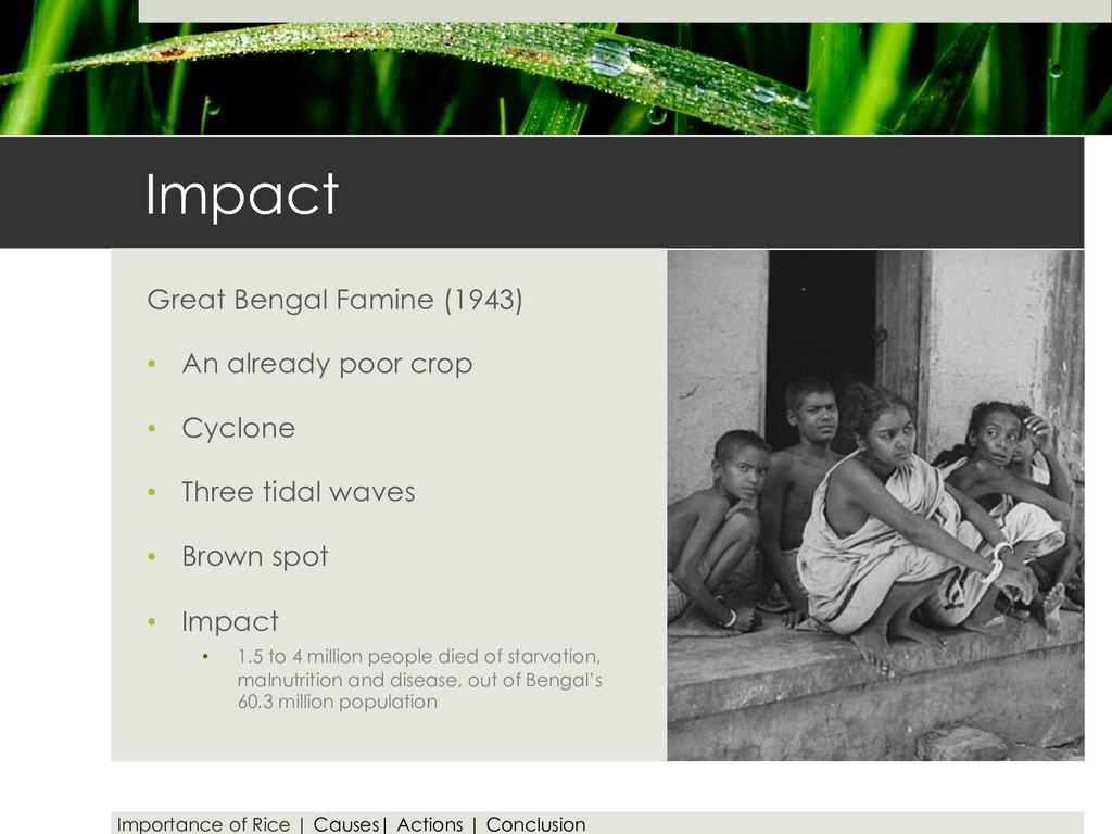 Impact Great Bengal Famine (1943) • An already ...