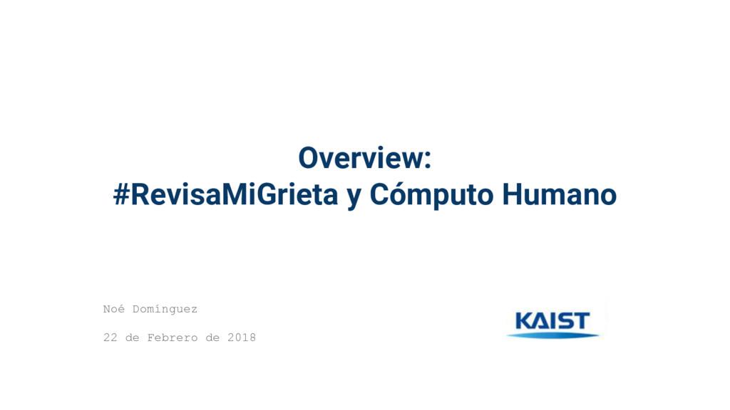 Overview: #RevisaMiGrieta y Cómputo Humano Noé ...