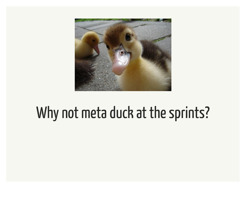 Why not meta duck at the sprints?