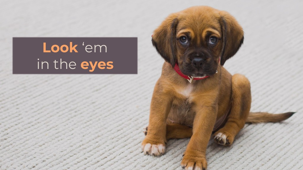 Look 'em in the eyes
