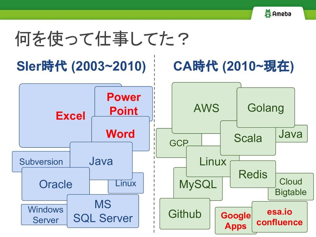 GCP MySQL Java Subversion Linux 何を使って仕事してた? Exc...