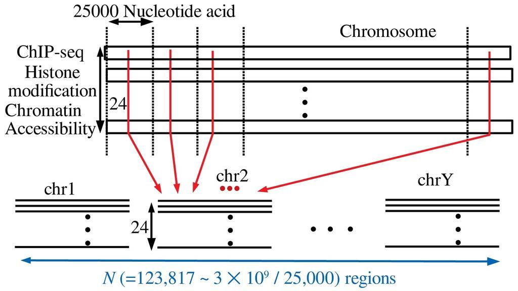 ● ● ● 25000 Nucleotide acid ChIP-seq Histone mo...