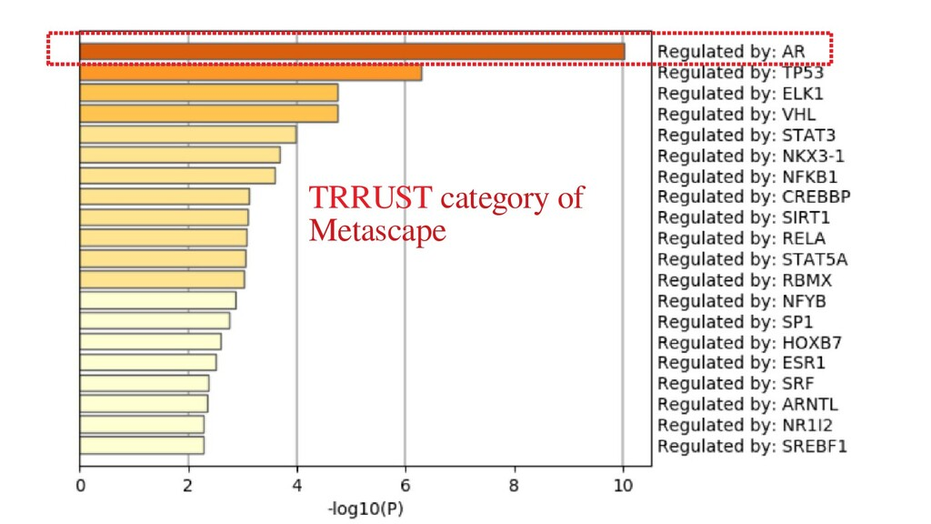 TRRUST category of Metascape