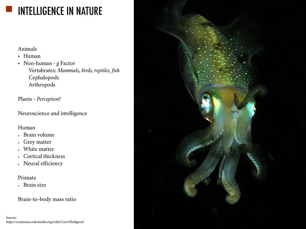 Animals • Human • Non-human - g Factor Vertabra...