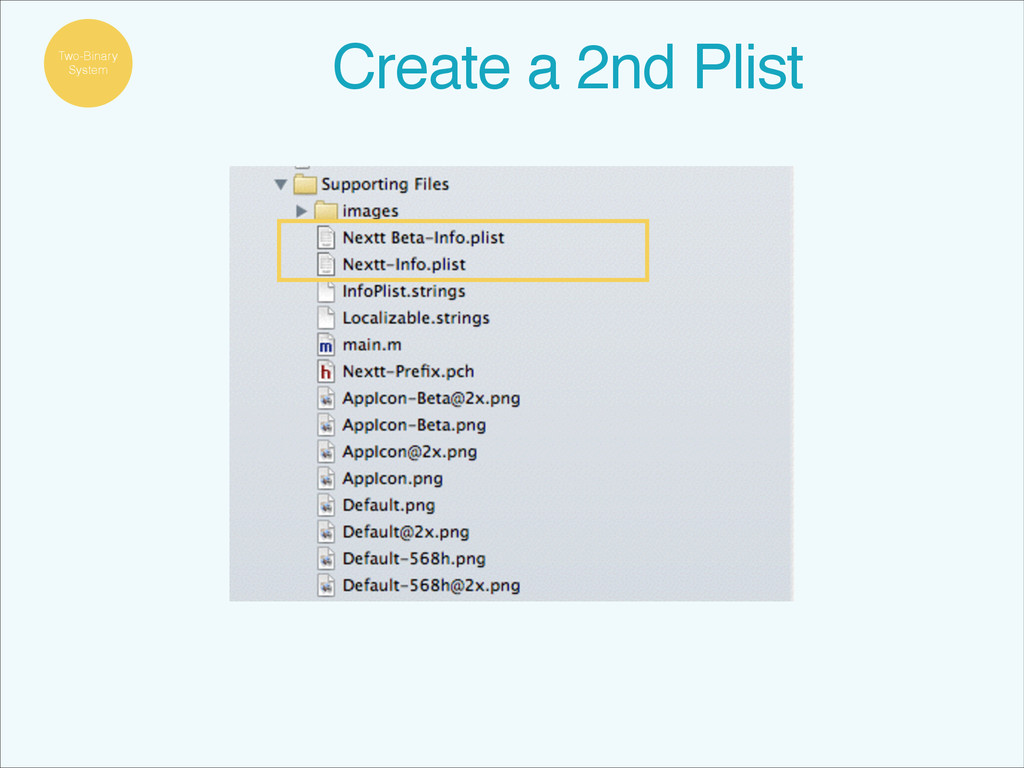 Two-Binary System Create a 2nd Plist