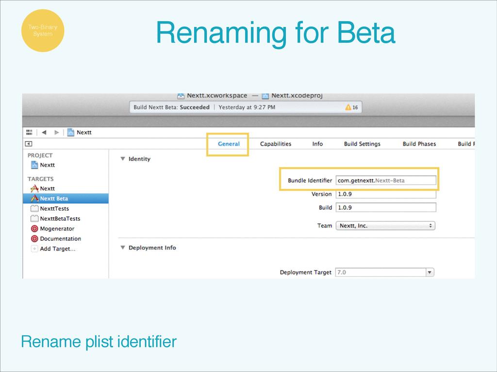 Rename plist identifier Two-Binary System Renam...