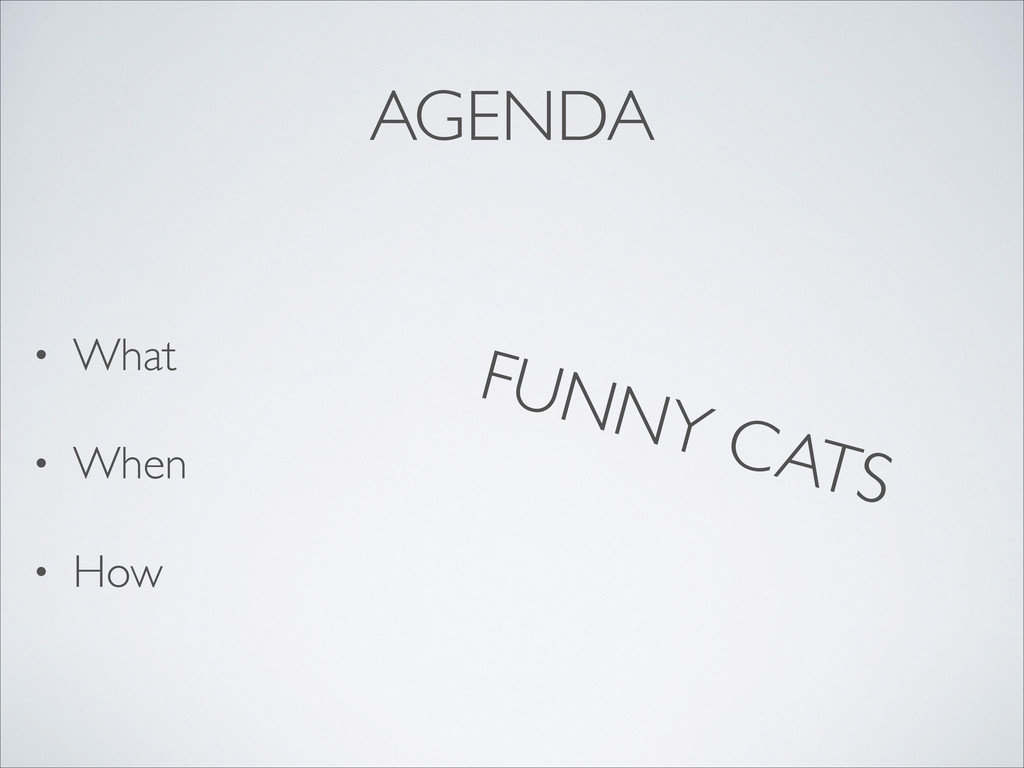 AGENDA • What  • When  • How FUNNY CATS