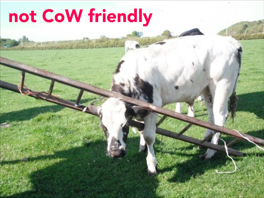 not CoW friendly
