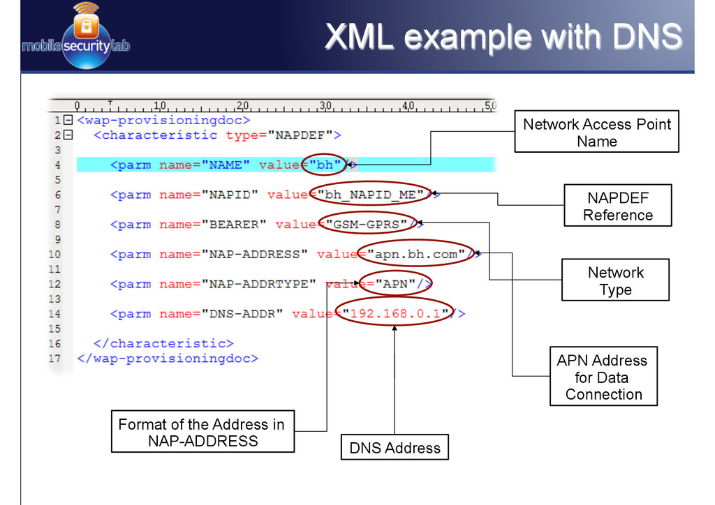 XML example with DNS Network Access Point Name ...