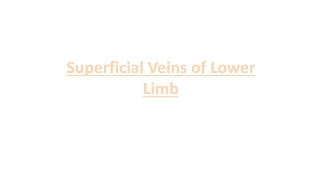 Superficial Veins of Lower Limb