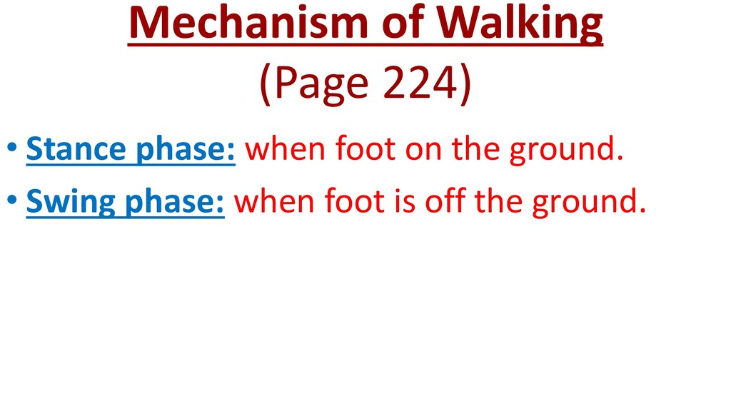 Mechanism of Walking (Page 224) • Stance phase:...