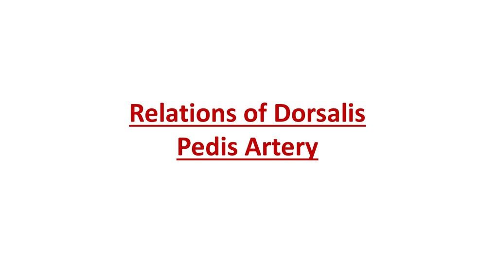 Relations of Dorsalis Pedis Artery