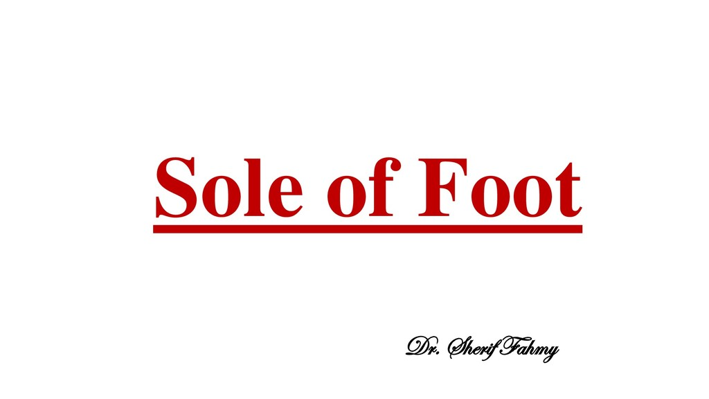 Sole of Foot Dr. Sherif Fahmy