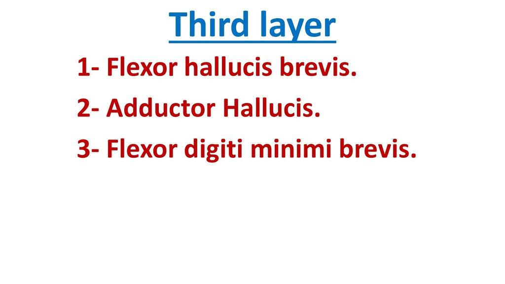 Third layer 1- Flexor hallucis brevis. 2- Adduc...