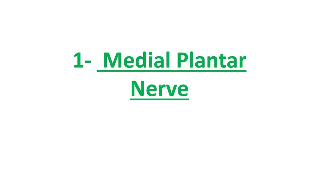 1- Medial Plantar Nerve