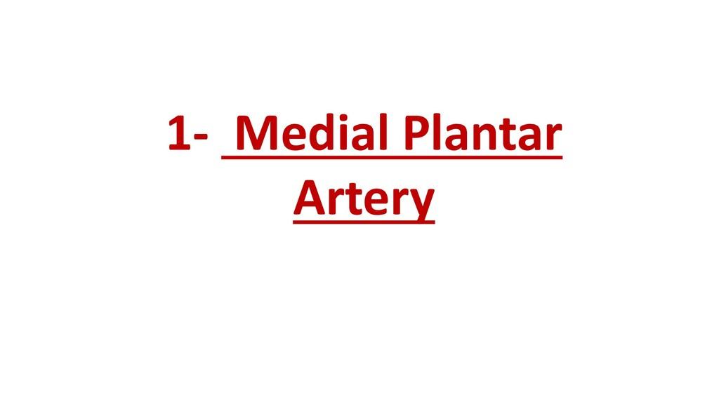 1- Medial Plantar Artery